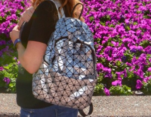 Disney spaceship earth backpack