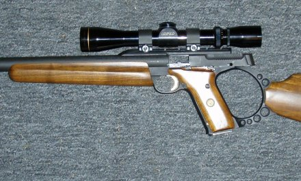 .22 Rifle-An Excellent Training Gun