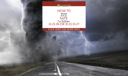 Should You Bug In or Bug Out? Find Out Here