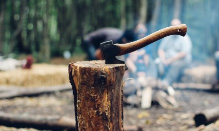 Firewood Is Not Created Equally:  Choosing The Best Firewood