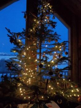 christmastree122216