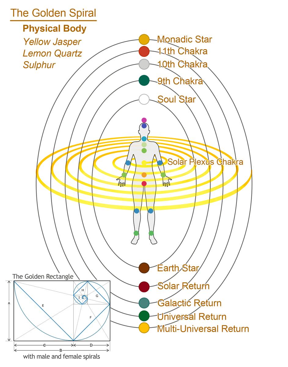 hight resolution of golden spiral