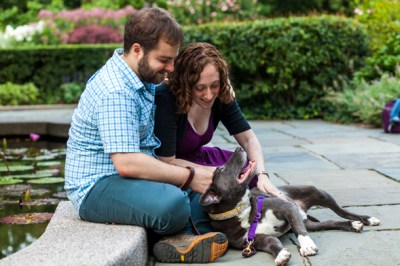 love-at-first-belly-rub-eschers-happy-tail-589x393