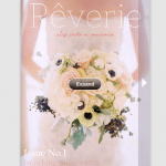 Reverie Magazine