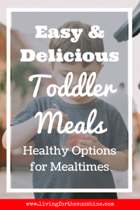 Healthy and Easy Toddler Meals