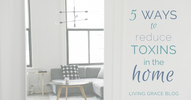 5 Ways to Reduce the Toxins in Your Home