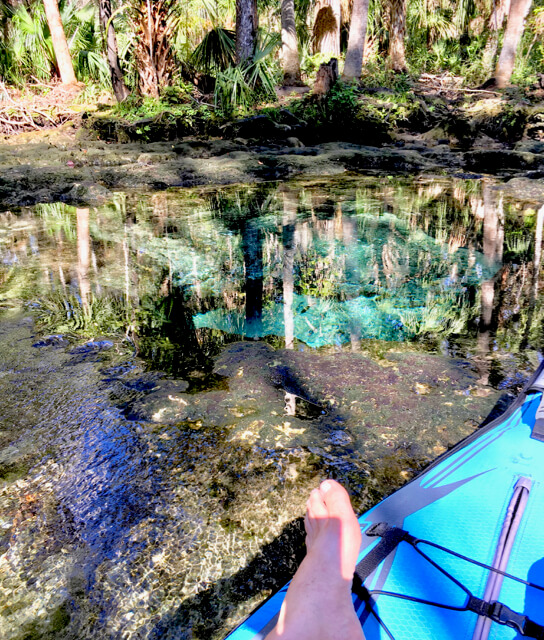 Crystal clear water near the springs