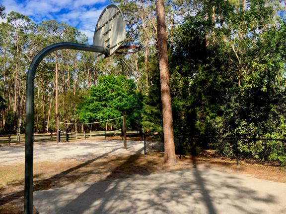 Disney's Fort Wilderness campground basketball and volleyball