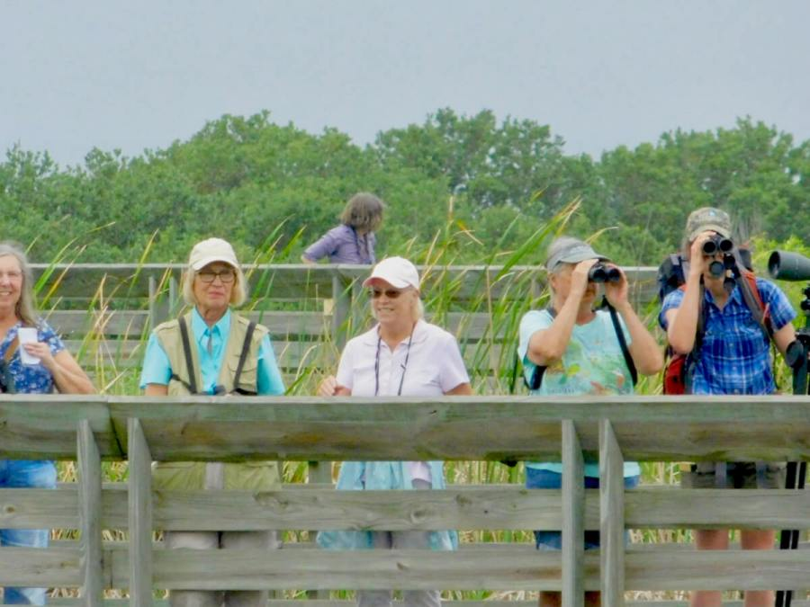 Texas border bird watching