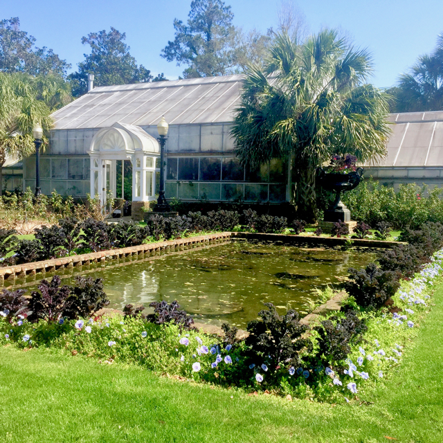 """The conservatory of """"exotics"""" which looked to us like almost anybody's yard in San Diego."""