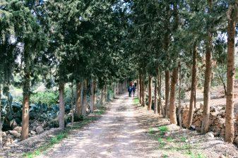 Hiking - towards King Talal Dam