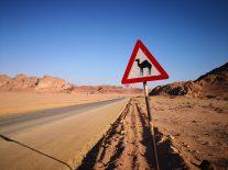 Driving towards Wadi Rum