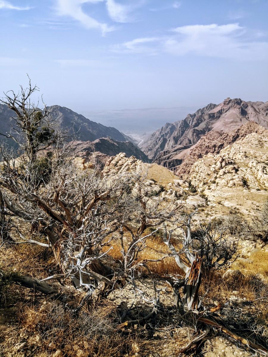 Black mountains of Wadi Arabah in background