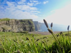 lovely Cliffs of Moher