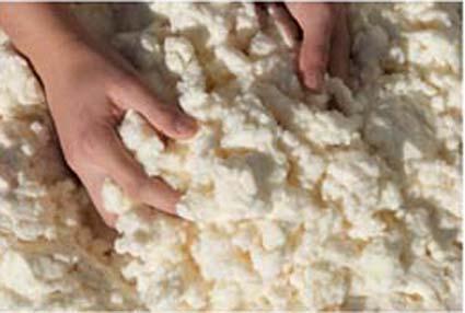 H2 Wool hält ökologisch warm
