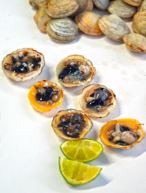 Black Clams in Boqueron, Puerto Rico