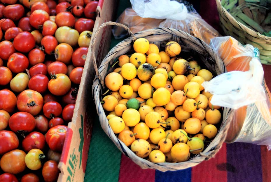 Tomatoes - Farmer's Market in Rincon