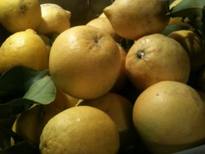 Now where's that recipe for lemon curd . . .?