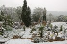 Our garden in March 2010 - just to prove it does sometimes snow on lower ground in Mallorca