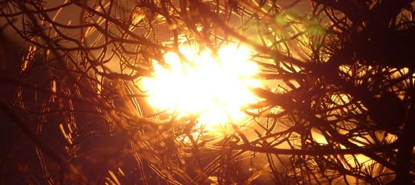 solstice sun 2016