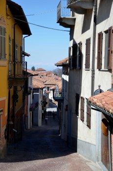La Morra, walking, Langhe, Piemonte, Italy