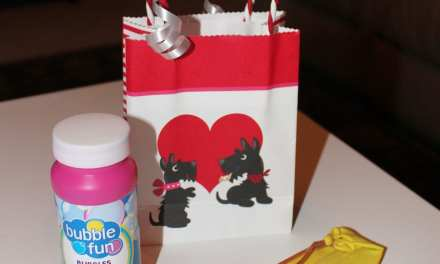 The Best Candy Free Valentines!