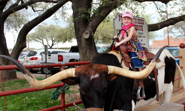 The Best Place to Take Guests in Fort Worth- The Stockyards
