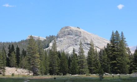 How We Visited 10 National Parks in 2 Weeks and You Can Too!