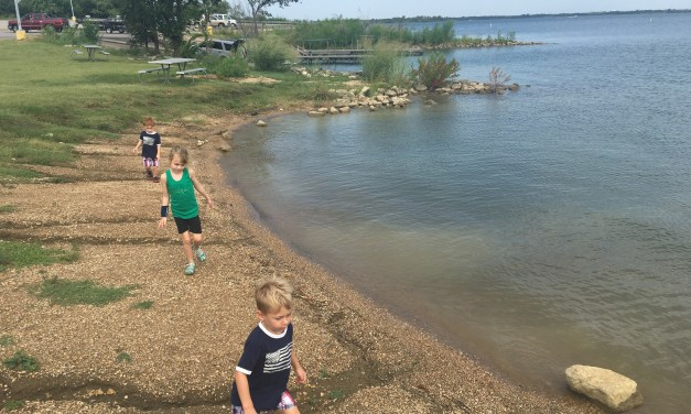 Information for your Visit to Cedar Hill State Park