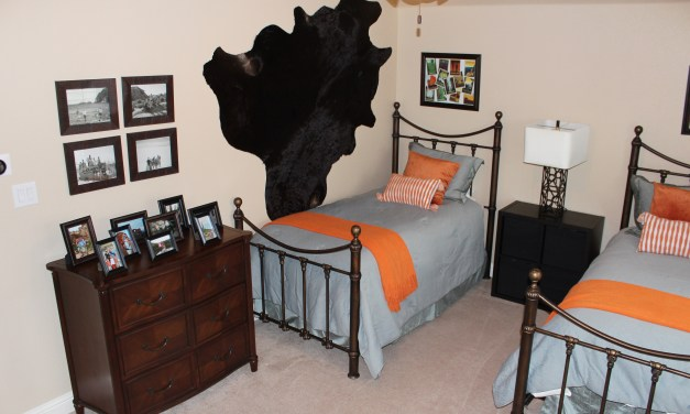 Boy's National Park Themed Bedroom