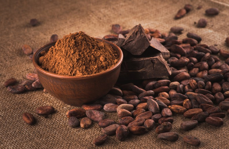 cacao chocolate