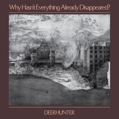 Deerhunter - Why Hasn't Everything Already Disappeared? | Reactions | LIVING LIFE FEARLESS