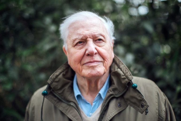 Legendary broadcaster Sir David Attenborough is organizing a competition to remix his old field recordings | News | LIVING LIFE FEARLESS