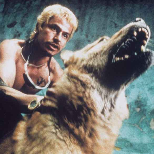 Alejandro González Iñárritu is restoring 'Amores Perros' for its 20th Anniversary | News | LIVING LIFE FEARLESS