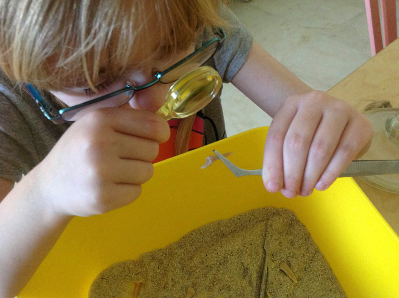 #100daysofhomeed, #LoveHomeEd, 100 days of home ed, freedom to learn, guest post, Home Education, SEND, PDA