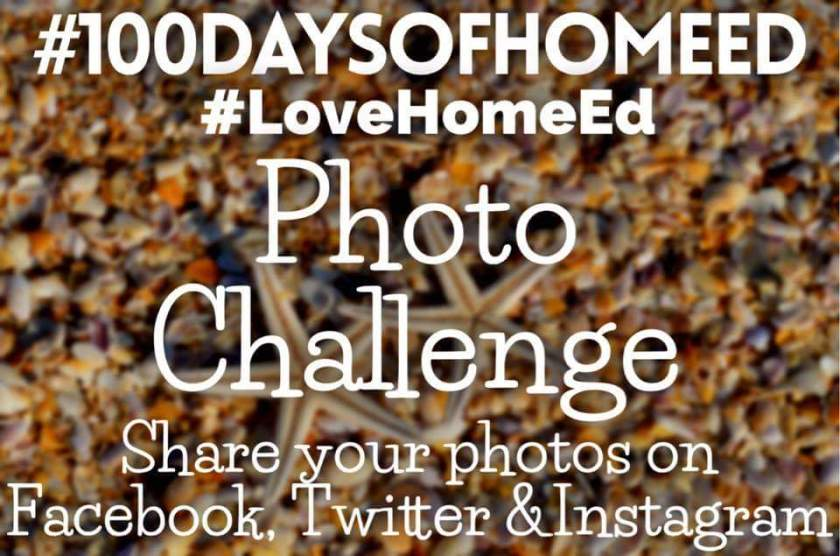 Living Life Our Way, #100daysofhomeed, #LoveHomeEd, 100 days of home ed, freedom to learn, guest post, Home Education, SEND