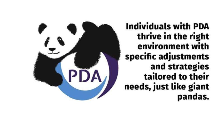 PDA society, PDA panda, pathological demand avoidance, PDA, autism, ASC, SEND