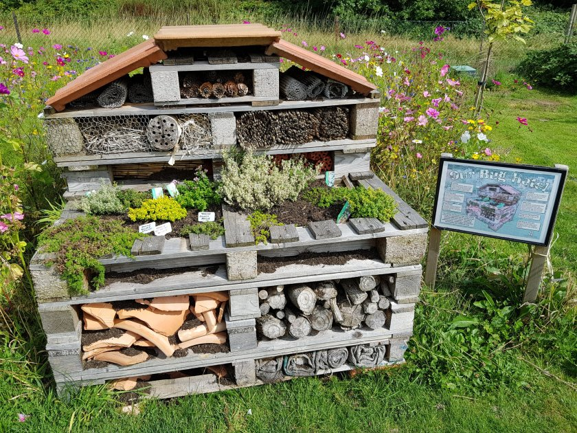 Celebration Gardens, bug hotel, wildlife, insects, outdoors, get outside, nature, places to visit, Aylett Nurseries, Hertfordshire, Living Life Our Way