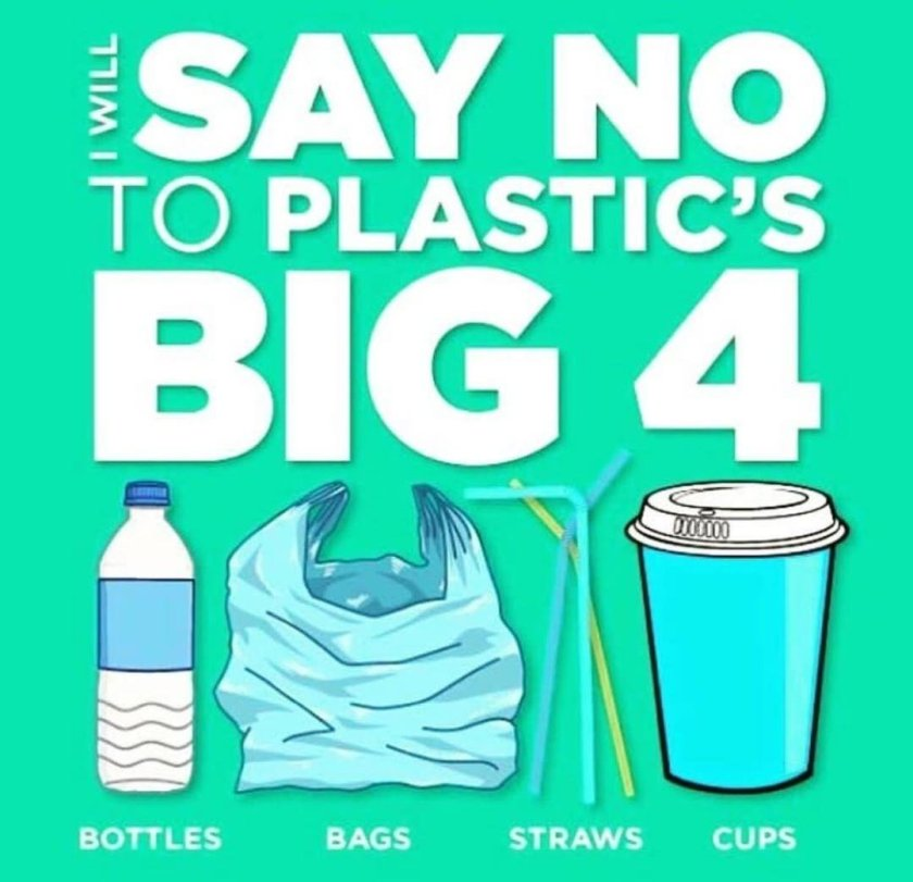 Graphic of bottle, bag, straw and cup with caption 'I will say no to plastic's big 4'