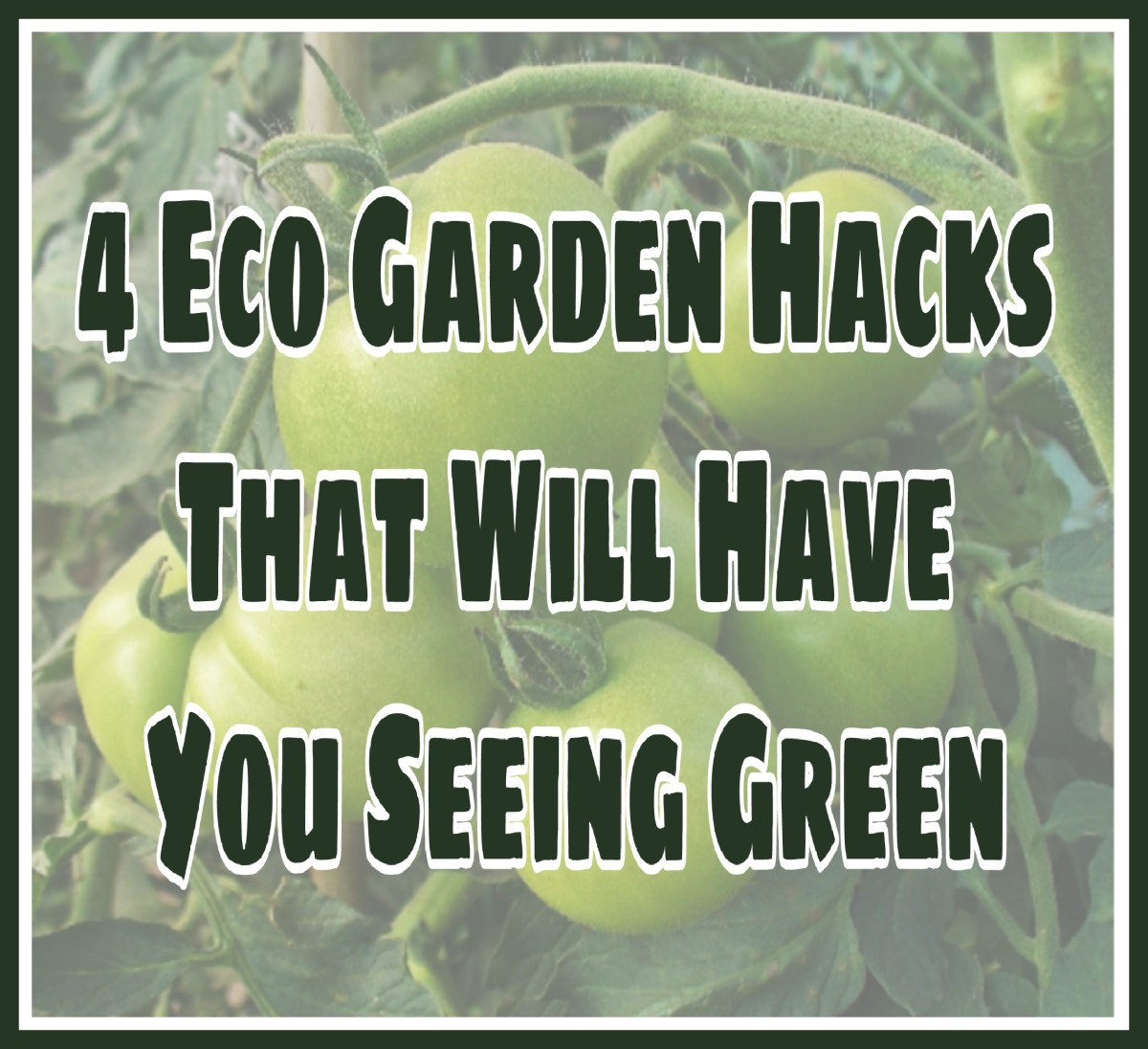 4 Eco Garden Hacks That Will Have You Seeing Green