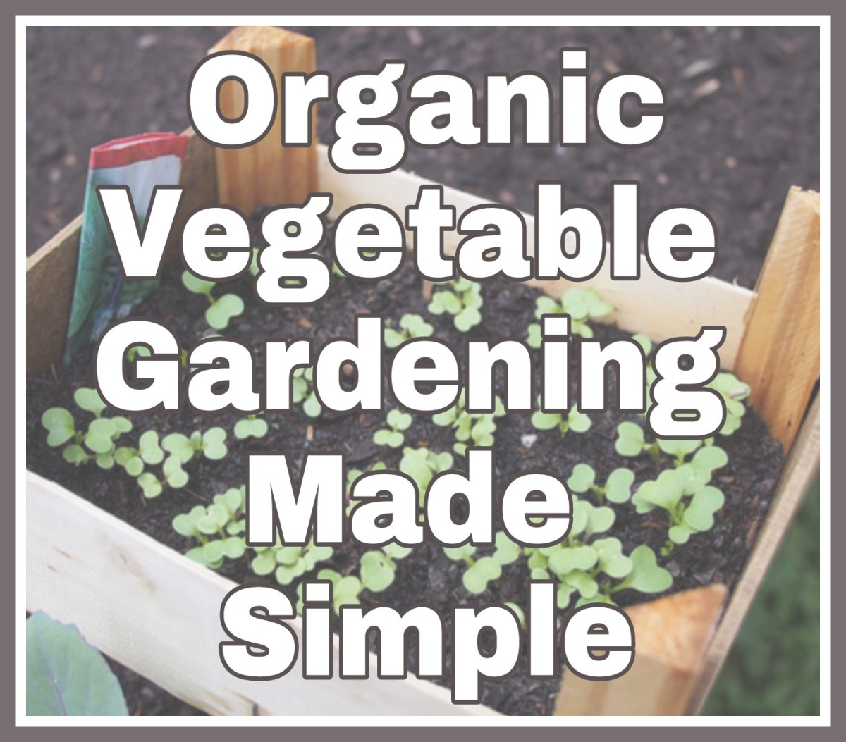 Organic Vegetable Gardening Made Simple
