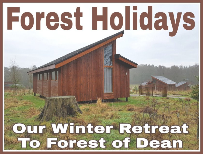 Title written on image of Forest Holidays cabin.