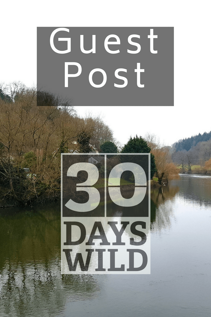 30 Days Wild guest post - life in rose tinted glasses