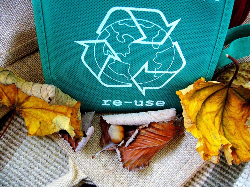 Reuse bag surrounded by leaves and nature