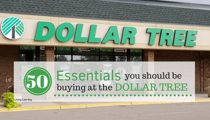 The Best Things To Buy At Dollar Tree And What Avoid