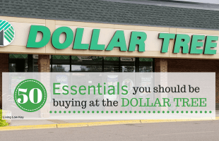The Best Things To Buy At The Dollar Tree And What To Avoid