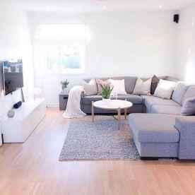 Amazing living room ideas (14)