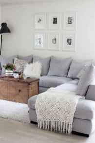 Amazing living room ideas (19)