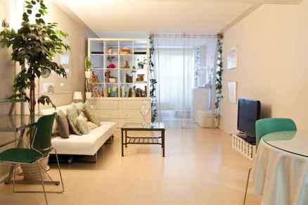 100 Awesome Apartment Studio Storage Ideas Organizing (3)