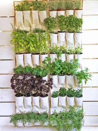 50 cool apartment garden ideas (50)